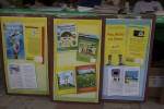 Posters for the featured titles at Governor de Jongh's  Summer Reading Challenge event on St John, U.S. virgin Islands.